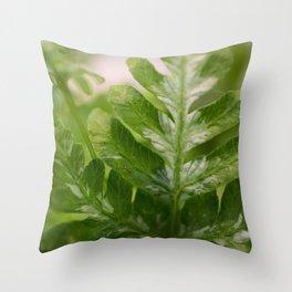 Fern Macro Throw Pillow