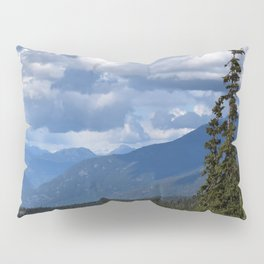 Muted Echo Pillow Sham