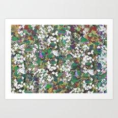 Hawthorn Digital Distortion Art Print