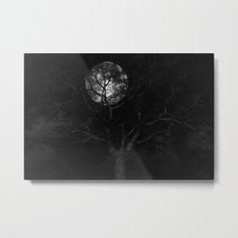 In The Pale Moonlight (Cloud series #13) Metal Print