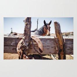 Horsehoe Blur Rug
