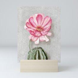 Flowering cactus Mini Art Print
