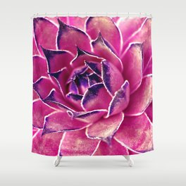 Suculenta Violeta Shower Curtain