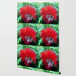 Liko Lehua - Budding Lehua Blossom Wallpaper
