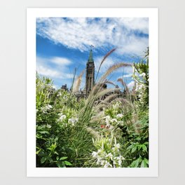 Decorative Fountain Grass & White Flowers in front of the Peace Tower, Parliament Hill, Ottawa, CA Art Print