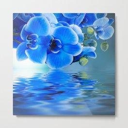 Blue Orchids Metal Print