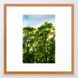 Glowing Trees Framed Art Print