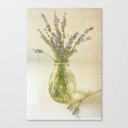 Lavender and Milk Canvas Print