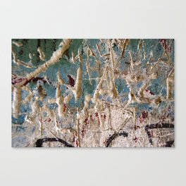 Scratched Surface Canvas Print