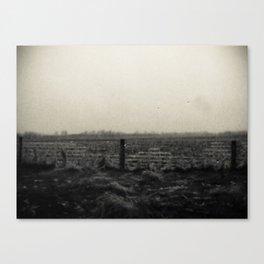 Desolation Fence 2 Canvas Print