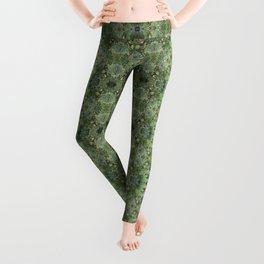 Succulent kaleidoscope Leggings