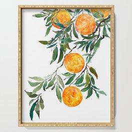 orange watercolor Serving Tray
