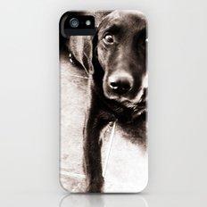 Dog Slim Case iPhone (5, 5s)