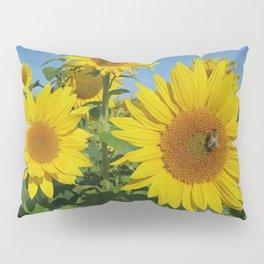 Large sunflower against blue sky in summer Pillow Sham