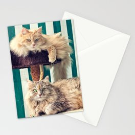 Siberian cats on the cat tree Stationery Cards