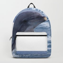 Bottenose dolphin Backpack