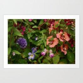 Wildflower Garden In The Morning Art Print