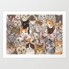 A lot of Cats Kunstdrucke