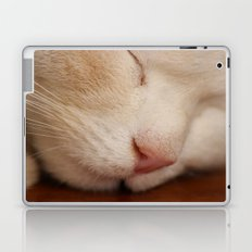 Sleeping Cat Laptop & iPad Skin