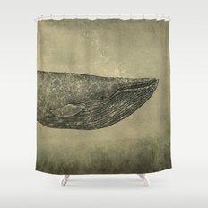 Damask Whale  Shower Curtain