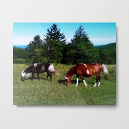 Feral Ponies of Grayson Highlands Metal Print