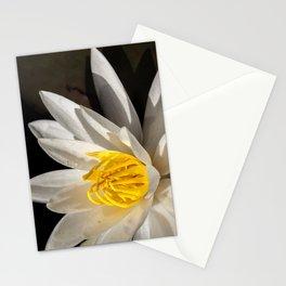 Nenuphar Stationery Cards