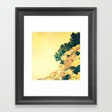 Joshua Tree 2 Framed Art Print
