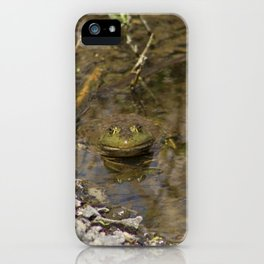 Whatcha Looking at Frog? iPhone Case