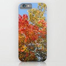 Autumn Leaves II iPhone 6s Slim Case