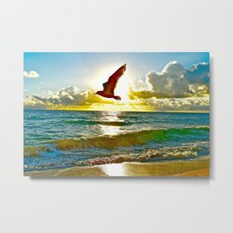 ocean Flight for P.F.R.  Metal Print