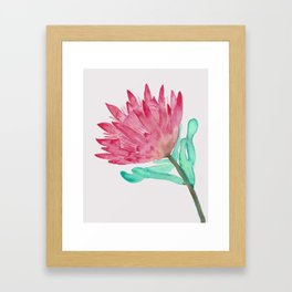 Watercolour King Protea Painting Framed Art Print