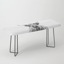 Black and White Highland Cow Portrait Bench