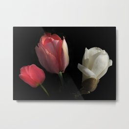 three beauties on black Metal Print