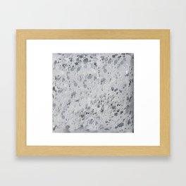 Silver Hide Print Metallic Framed Art Print