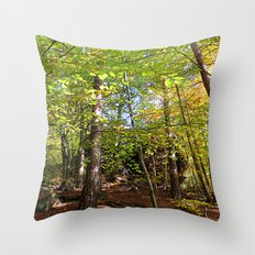 MM - Autumnally forest Throw Pillow