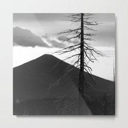 Black Butte Back Road. Metal Print