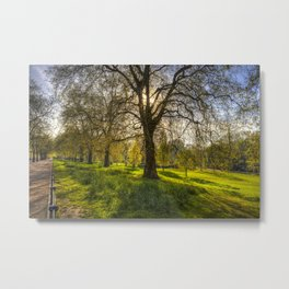 St James Park London Metal Print