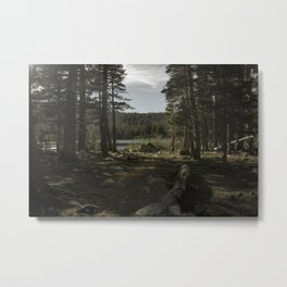 Good Morning Forest Metal Print