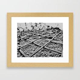 Lines... Framed Art Print