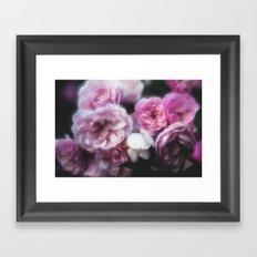 Wild Roses 1 Framed Art Print