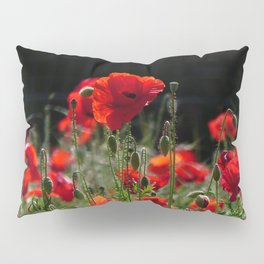 Red Poppies in bright sunlight Pillow Sham