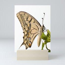 Swallowtail Butterfly Vector Isolated Mini Art Print