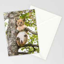 OOPS!! Stationery Cards