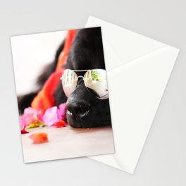 Summer Bear Stationery Cards