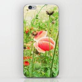 Vintage Poppies iPhone Skin