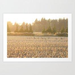 Autumn Wild Geese Art Print