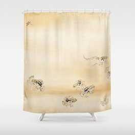 Takeuchi Seiho A Fine Day During The Rainy Season Shower Curtain
