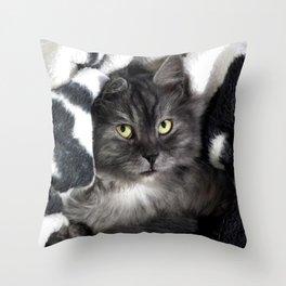 Spooky Black Cat Throw Pillow