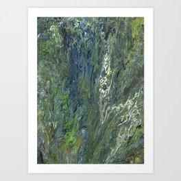 Algae Covered Rock Art Print
