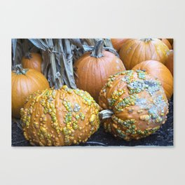 Longwood Gardens Autumn Series 332 Canvas Print